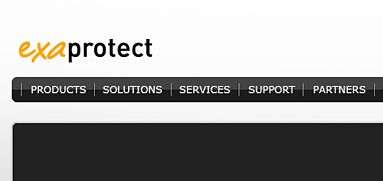 Exaprotect web design