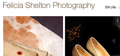 Thumbnail image for Felicia Shelton Photography website